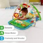 baby-gym-fisher-price-6